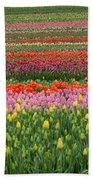 Tractor Among The Tulips Bath Towel
