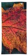 Translucent Red Oak Leaf Study Bath Towel