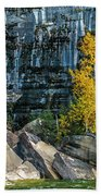 Tree At Picture Rock Cruise Bath Towel