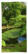 Tree Ferns Bath Towel