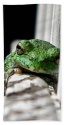 Tree Frog Bath Towel