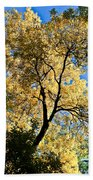 Tree In Fall Bath Towel