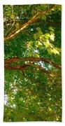 Tree In Late Summer Bath Towel