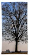 Tree In The Morning Light Bath Towel