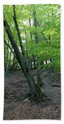 Tree In The Woods Bath Towel