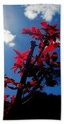 Tree Leaves Red 061814a Bath Towel