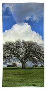Tree Of Life Style Oak Tree And Coluds Bath Towel