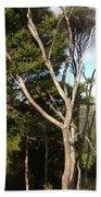Tree Tops And Beyond Bath Towel