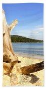 Tree Trunk On Beach Bath Towel