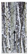 Tree Trunks Covered With Snow In Winter Hand Towel by Elena Elisseeva