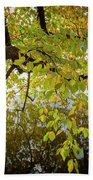 Trees 9684 Bath Towel