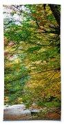 Trees Along The Flumes Trail Bath Towel
