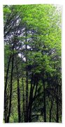 Trees Along The Umpqua River 2 Bath Towel