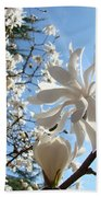 Trees Art Prints White Magnolia Flowers Baslee Troutman Bath Towel