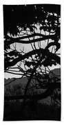 Trees Black And White - San Salvador Bath Towel
