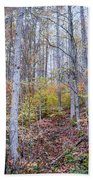 Trees In Autumn Bath Towel