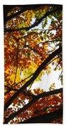 Trees In Fall Fashion Bath Towel