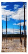 Trees In The Midway Geyser Basin Bath Towel