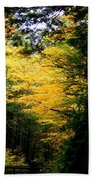 Trees Over The Flumes Gorge Bath Towel