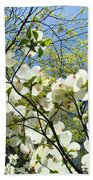 Trees Sunlit White Dogwood Art Print Botanical Baslee Troutman Bath Towel