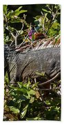 Treetop Iguana Bath Towel