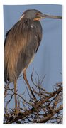 Tri Color Heron Bath Towel