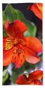 Trio Of Alstroemeria Inca Flowers-4 Bath Towel