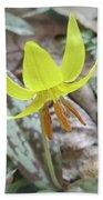 Trout Lily Wildflower - Erythronium Americanum Bath Towel