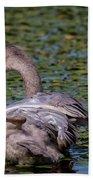 Trumpeter Swan Foot Wave Bath Towel