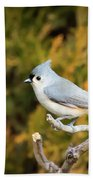 Tufted Titmouse On A Branch Bath Towel