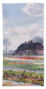 Tulip Fields At Sassenheim Bath Towel