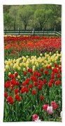 Tulip Fields Bath Towel