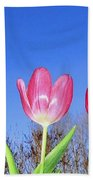 Tulip Panorama Bath Towel