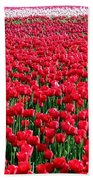 Tulips By The Million Hand Towel