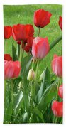 Tulips Flowers Art Prints Spring Tulip Flower Artwork Nature Art Bath Towel