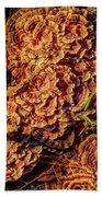 Turkey Tail Mushrooms  Bath Towel