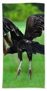 Turkey Vulture In Flight Bath Towel