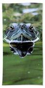 Turtle Head Bath Towel