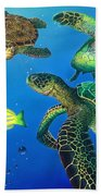 Turtle Towne Bath Towel