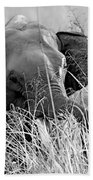 Tusker In The Grass Bath Towel