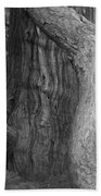 Twisted Old Tree Bath Towel