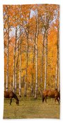 Two Colorado High Country Autumn Horses Hand Towel