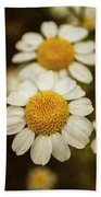 Two Daisies Bath Towel