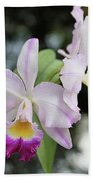 Two Delicate Orchids Bath Towel