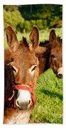 Two Donkeys Bath Towel