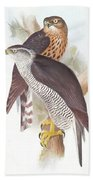 Two Goshawks Bath Towel