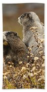 Two Marmots Bath Towel