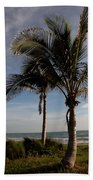 Two Palms And The Gulf Of Mexico Bath Towel
