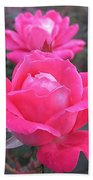 Two Pink Double Roses Bath Towel