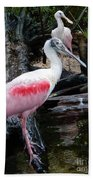 Two Spoonbills Bath Towel